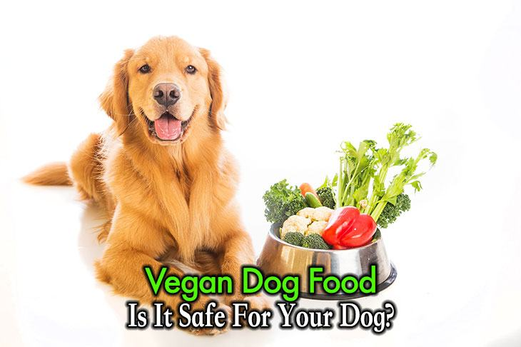 vegan dog food